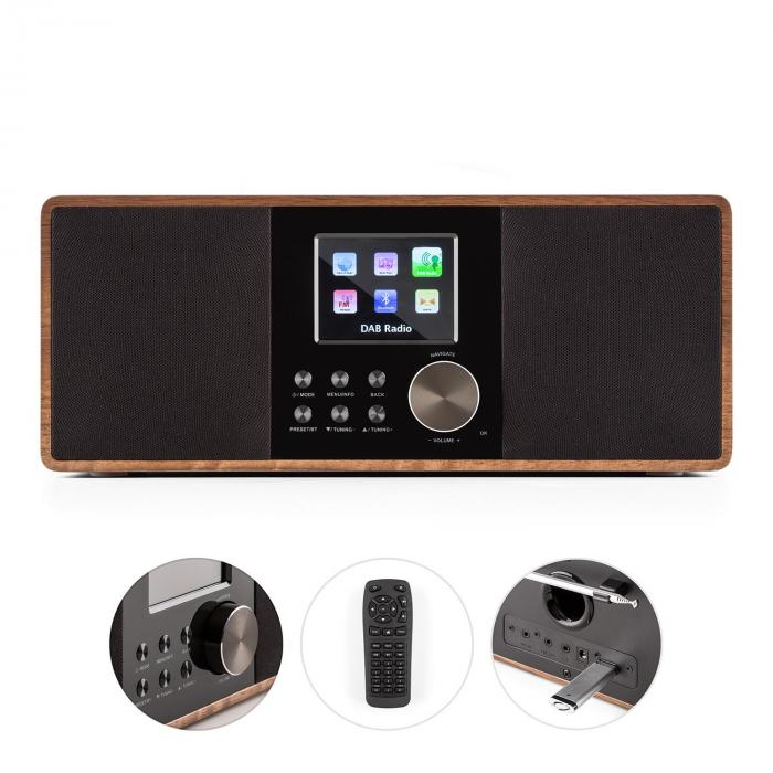CONNECT 100, radio prin internet, media player, bluetooth, WLAN,DAB/DAB+, USB, AUX, Line Out